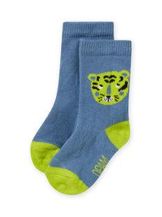 Calze celeste e verde con motivo tigre neonato MYUJOCHOU2 / 21WI101BSOQ020