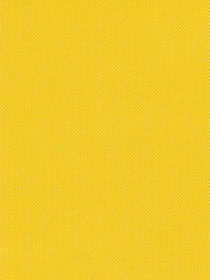 Felpa con cappuccio gialla in cotone neonato LUJOGIL1 / 21SG1032GIL106